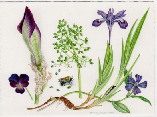 <span class=&#34;artist&#34;><strong>Beverly Duncan</strong></span>, <span class=&#34;title&#34;><em>Ashfield Composition, Spring Purples </em>, 2014</span>
