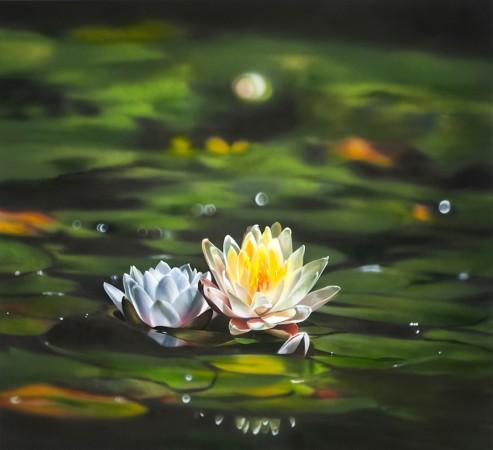 <span class=&#34;artist&#34;><strong>Ben Schonzeit</strong></span>, <span class=&#34;title&#34;><em>Water Lily</em></span>