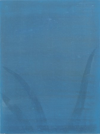 <p>Sarah Pater,&#160;<i>Blue aloe</i>, 2015</p><p>Oil on panel, 12 x 9 in.</p><p>pate005</p>