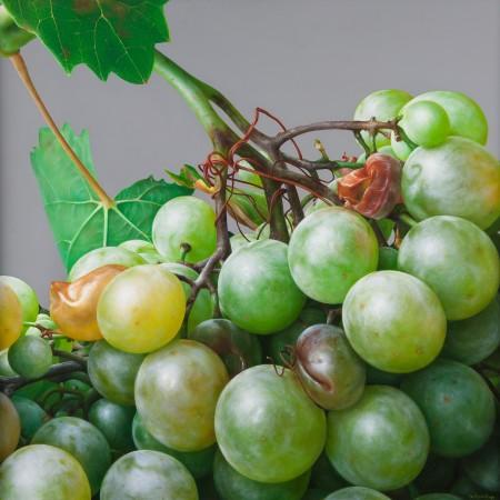 <p>Antonio Castello</p><p>&#34;Grapes III&#34;</p><p>Oil on linen</p><p>80 x 80 cm</p>