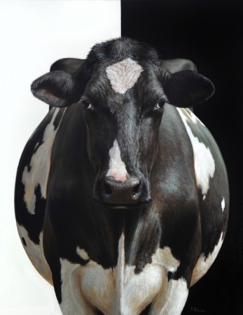 <p>Alexandra Kilmas</p><p>&#34;Evi the Cow&#34;</p><p>Oil on canvas</p><p>103 x 100 cm</p>