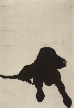 <span class=&#34;artist&#34;><strong>Kate Boxer</strong></span>, <span class=&#34;title&#34;><em>Lenny (Framed)</em></span>
