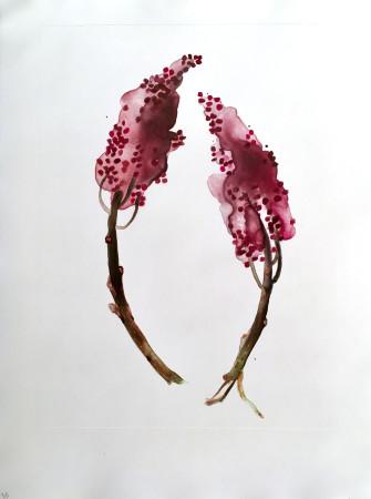 <span class=&#34;artist&#34;><strong>Katie De Groot</strong></span>, <span class=&#34;title&#34;><em>Sumac</em>, 2017 </span>