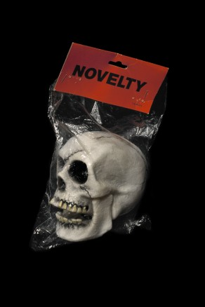 The Final Project [Skull head (NOVELTY)], 1991 - 1992
