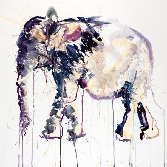 Elephant IV
