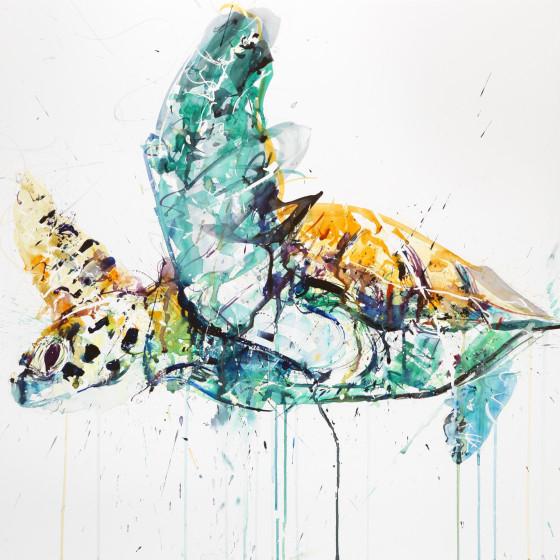Sea Turtle, October 2013