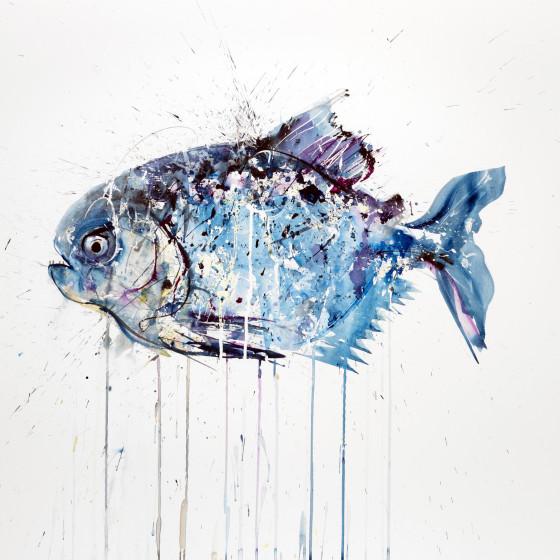 Piranha, October 2013