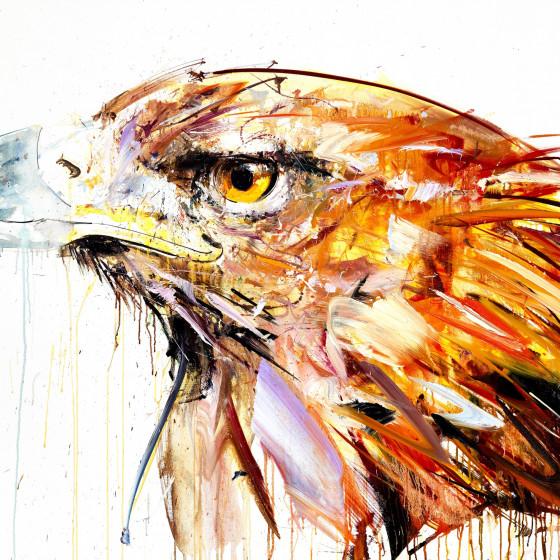 Golden Eagle, 2014