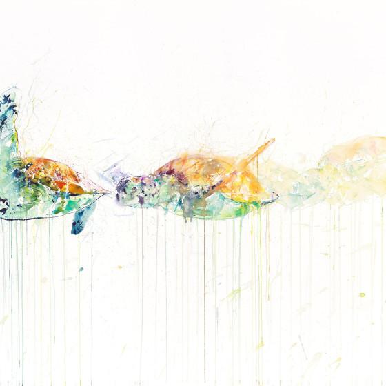 Sea Turtle Movement , 2015