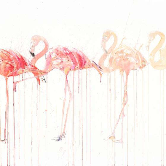 Flamingo Movement, 2015
