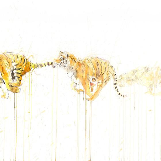 Tiger Movement, 2015