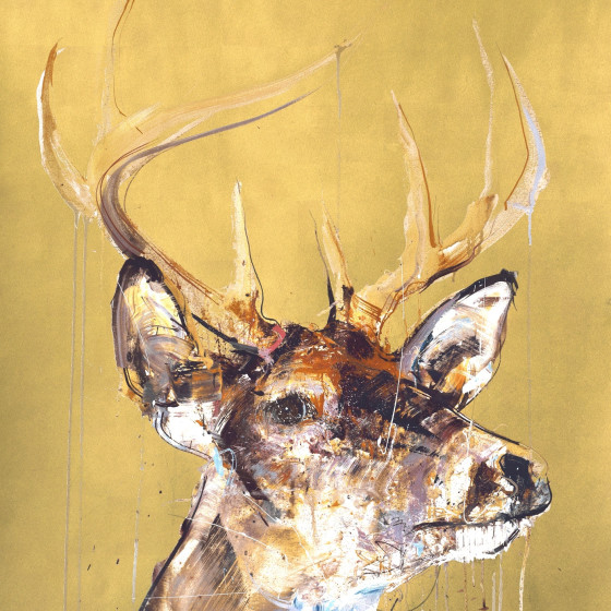 STAG IV GOLD LEAF EDITION