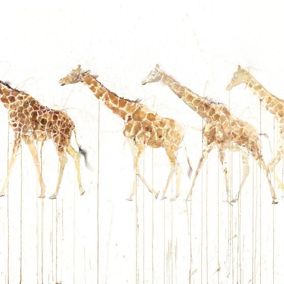 Giraffe Movement, 2015