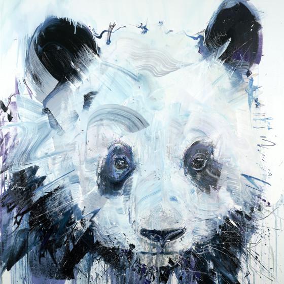 Panda Limited Edition