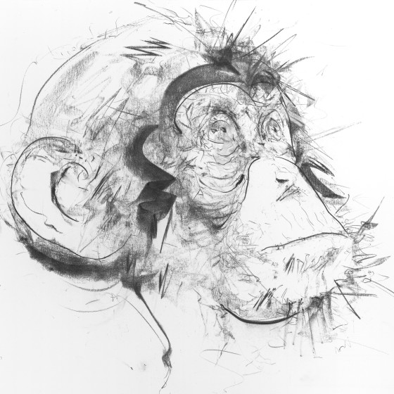 Chimp III (Right Facing), 2017