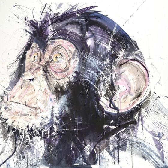 Chimp III, 2017