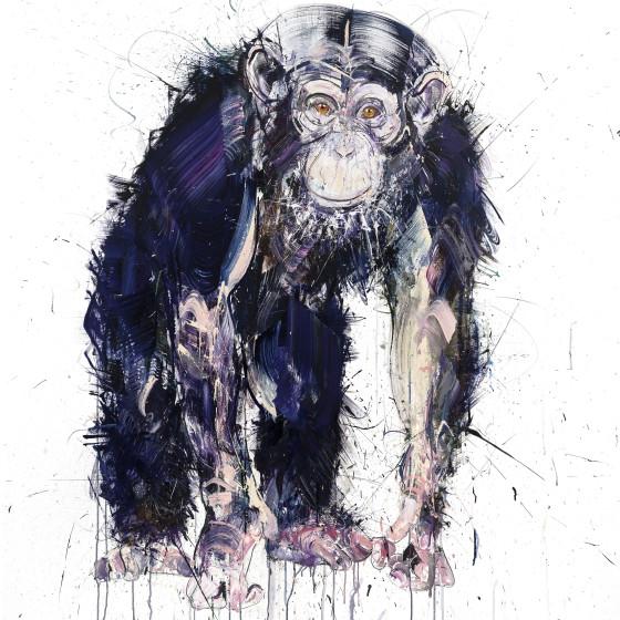 Chimpanzee III, 2018