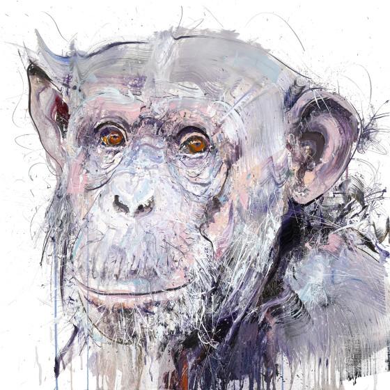 Old Chimp II