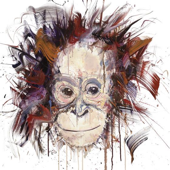 Young Orangutan , 2018