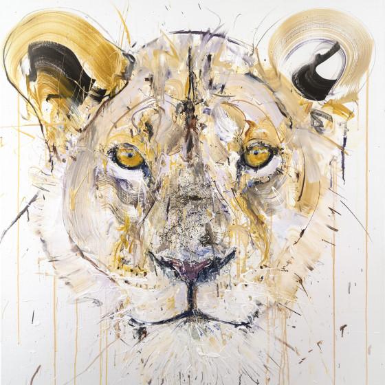 Lioness, 2018
