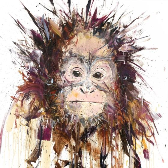 Orangutan , 2016