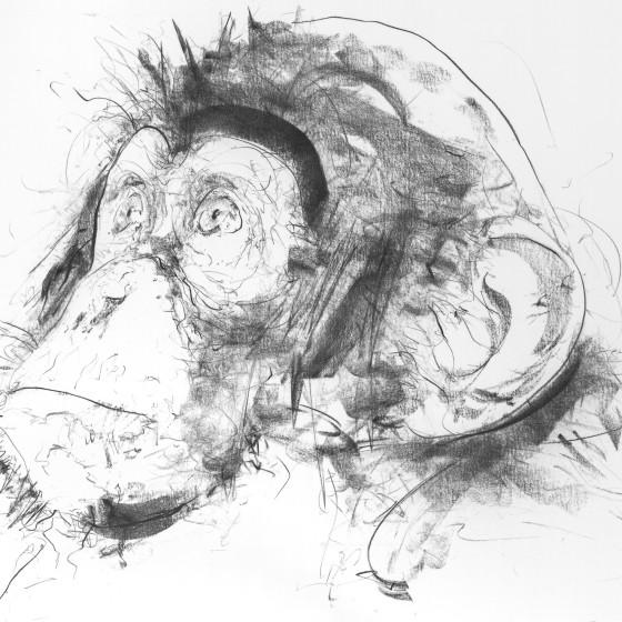 Chimp III (Left Facing), 2017