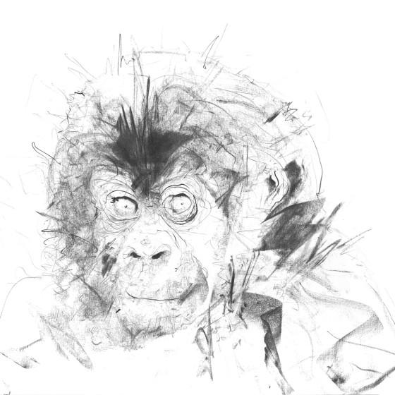 Baby Gorilla II, 2017