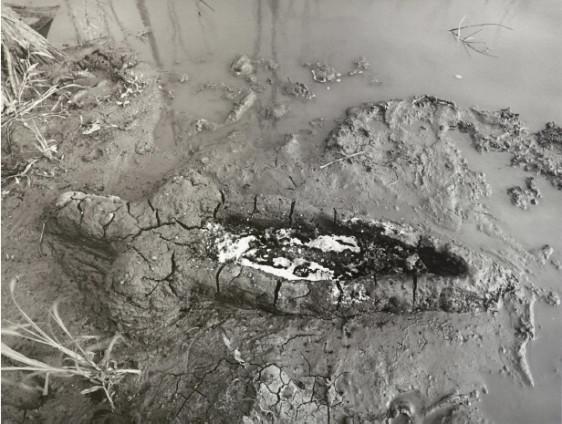 Ana Mendieta Birth, 1981/2013 Black and white photograph 76.2 x 101.6 cm, 30 x 40 ins