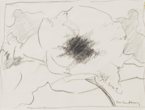 """Dorothea Tanning Sketch for Cyanea barbellata (Dalliance), 1997 Graphite on vellum 21 x 31.1 cm, 8 1/4 x 12 1/4 ins 42.5 x 39 x 3.75 cm, 16 3/4 x 15 3/8 x 1 1/2 ins, framed Signed """"Dorothea Tanning"""" bottom right"""
