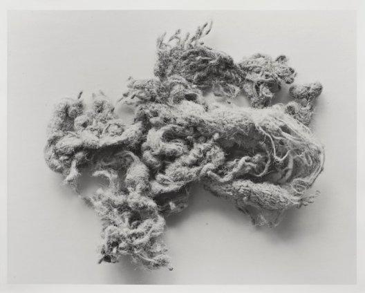 N. Dash Untitled, 2013 Silver Gelatin print 50.4 x 40.5 cm 19 7/8 x 16 ins Unique