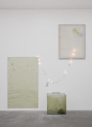 Ian Kiaer Endnote, ping (marder), 2019 Acrylic, pencil on paper, Plexiglas, canvas, fish tank, plant, water, lights Dimensions variable Perspex: 129.8 x 76.5 x 0.8 cm, 51 1/8 x 30 1/8 x 1/4 ins Canvas: 86.4 x 66.4 x 2 cm, 34 1/8 x 26 1/8 x 3/4 ins Fish tank: 48 x 43 x 26 cm, 18 7/8 x 16 7/8 x 10 1/4 ins