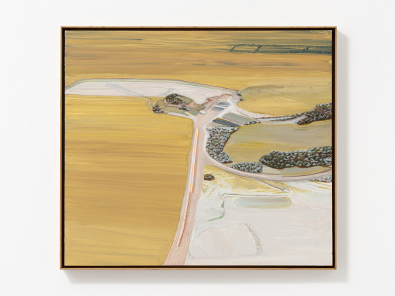 Carol Rhodes Surface Mine, 2009-11 Oil on board 50 x 56.7 cm, 19 3/4 x 22 3/8 ins 51.6 x 58.5 cm, 20 1/4 x 23 1/8 ins framed Signed, titled and dated (upper middle verso)