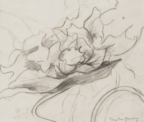 """Dorothea Tanning Sketch for Convolotus alchemelia (Quiet-willow window) (2 of 2), 1998 Graphite on vellum 22.6 x 26.7 cm, 8 7/8 x 10 1/2 ins 46 x 44 x 3.75 cm, 18 1/8 x 17 3/8 x 1 1/2 ins, framed Signed """"Dorothea Tanning"""" bottom right"""