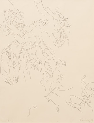 Dorothea Tanning Swarm, 1989 Graphite on paper 126.4 x 96.5 cm, 49 1/4 x 38 ins 148 x 118.1 cm, 58 1/4 x 46 1/2 ins, framed Signed and dated on recto 'Dorothea Tanning 89' (lower right) Inscribed 'Swarm' (lower left)