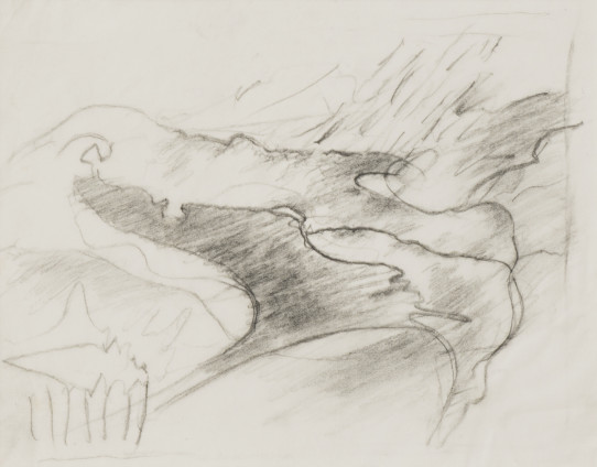 Dorothea Tanning Sketch for Crepuscula glacialis (var Flos cuculi), 1997 Graphite on vellum 22 x 18.5 cm, 8 5/8 x 7 1/4 ins 42 x 39 x 3.75 cm, 16 1/2 x 15 3/8 x 1 1/2 ins, framed