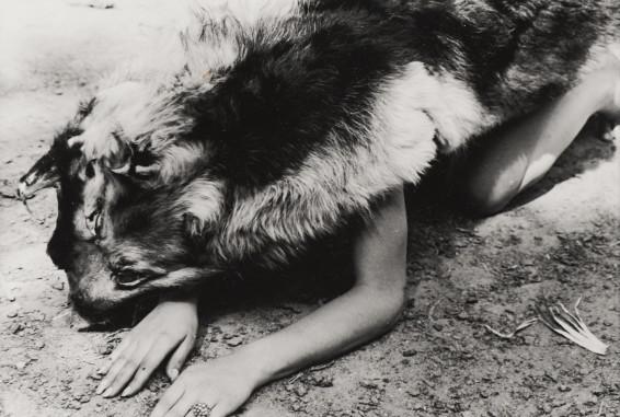 Ana Mendieta Dog, 1974 Lifetime black and white photograph 20.3 x 25.4 cm, 8 x 10 ins, paper size 38.7 x 44.8 x 3.2 cm, 15 1/4 x 17 5/8 x 1 1/4 ins, framed Unique
