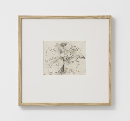 Dorothea Tanning Untitled, 1997 Graphite and watercolour on vellum 18.2 x 22.3 cm, 7 1/8 x 8 3/4 ins 38.5 x 37.5 x 3.75 cm, 15 1/8 x 14 3/4 x 1 1/2 ins, framed