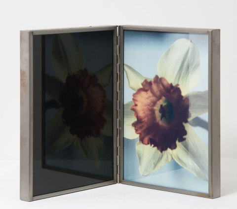 Birgit Jürgenssen  Narcissus and Echo, 1991  Diapositive, glass, lamp, metal frames and wood  30 x 43.6 cm, 11 3/4 x 17 1/8 ins