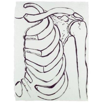 Andy Warhol, Physiological Diagram, c. 1985-86