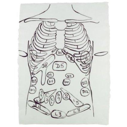 Andy Warhol, Physiological Diagram, 1985-86