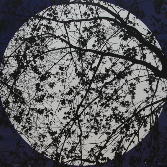 midnight-moonlight-2012.jpg