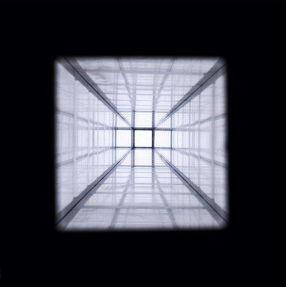 Vertical Corridor, 2004