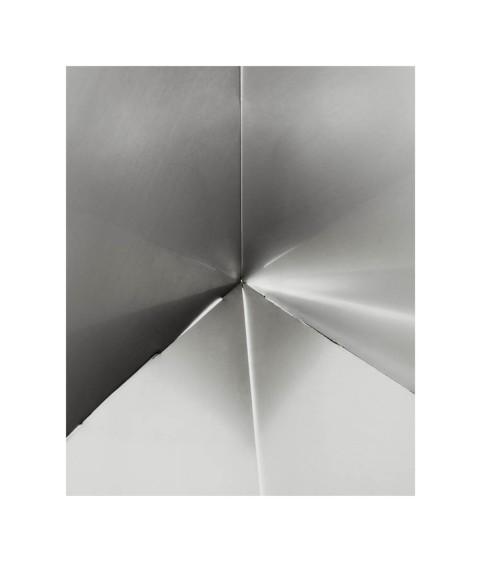 Untitled (Bicho Invertebrado, #13), 2013
