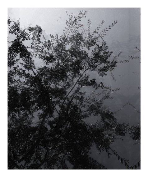 Untitled (Sheats-Goldstein House #38), 2007