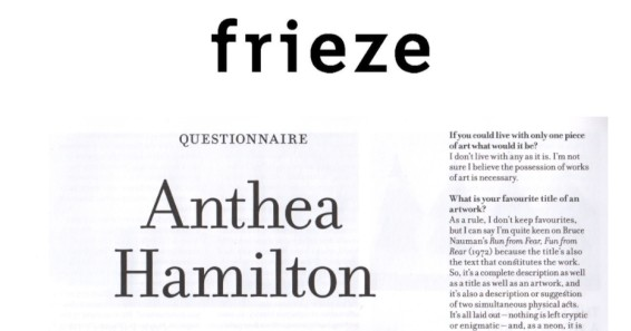 Questionnaire : Anthea Hamilton