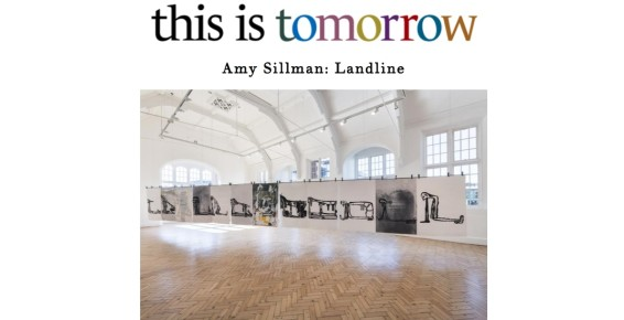 Amy Sillman: Landline