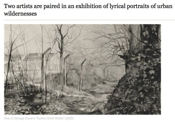 Two artists are paired in an exhibition of lyrical portraits of urban wildernesses