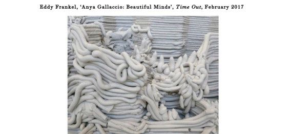 Anya Gallaccio: Beautiful Minds