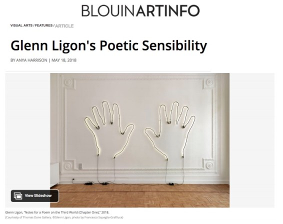Glenn Ligon's Poetic Sensibility