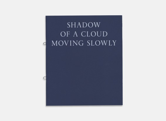 Dana Schutz: Shadow of a Cloud Moving Slowly